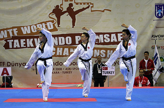 2012-12-05_414x_Poomsae_Turkey